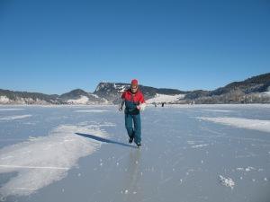 Skating-De Zayas
