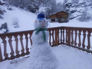 Skiing.Alfred-de-Zayas8
