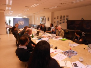 On 15 May I convened an expert consultation in Brussels at the UNDP office, attended by fifteen experts from various organizations.